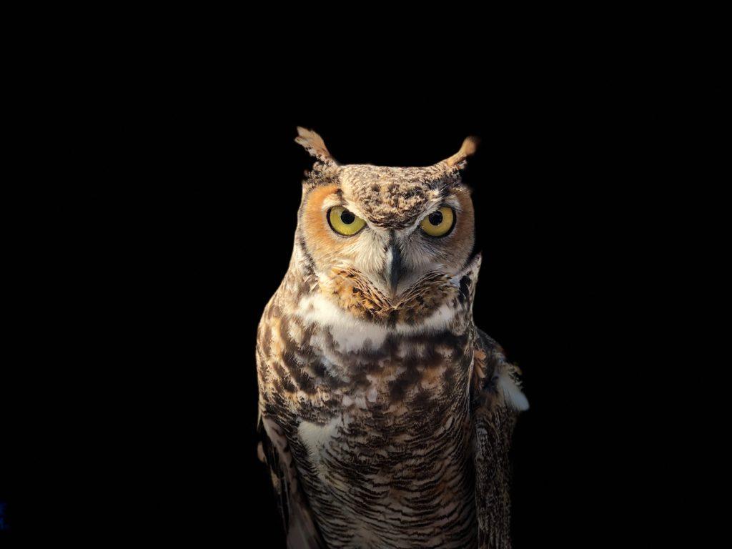 Franken: Ende der Sperrungen wegen Vogelschutz