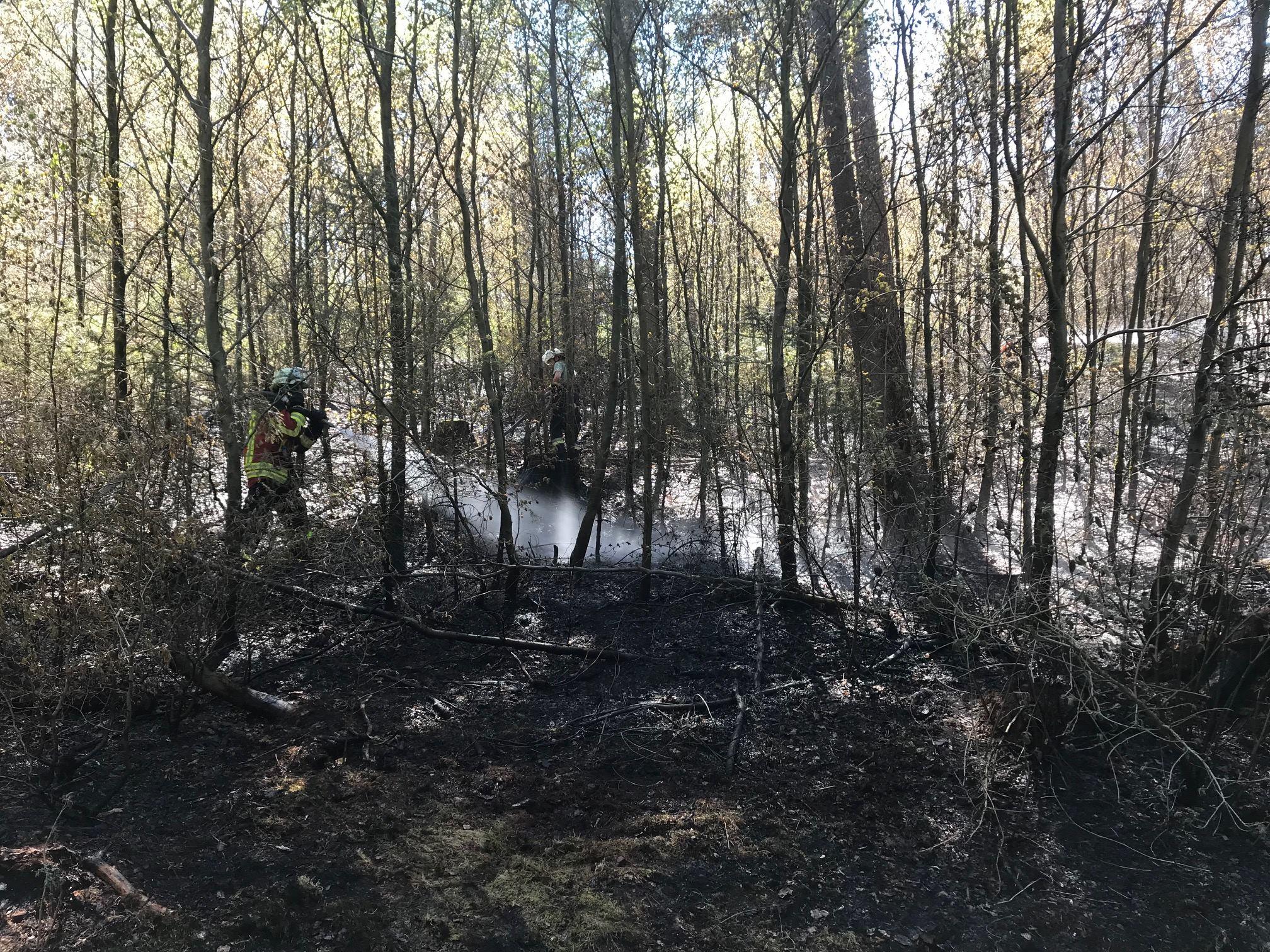 Waldbrand bei Neuensorg/Hartenstein