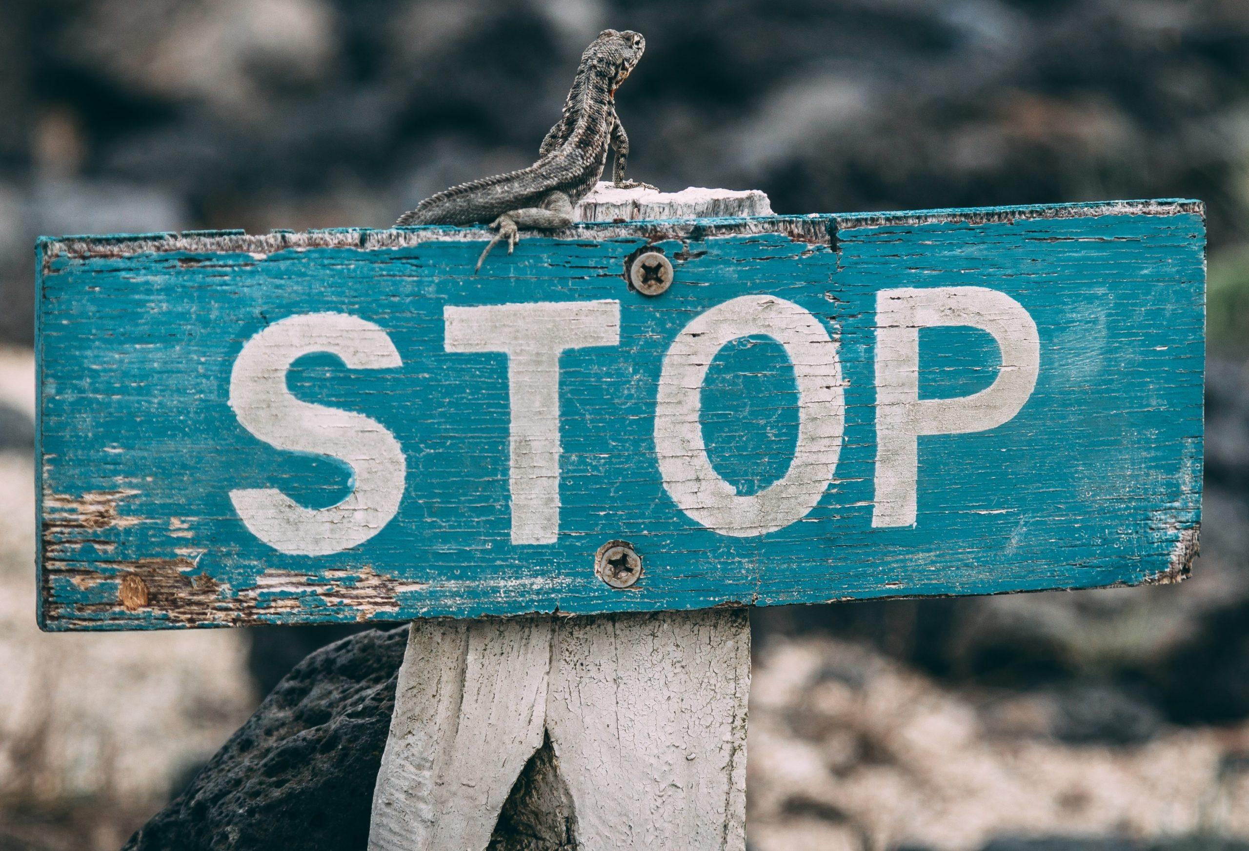 Ausgangsbeschränkung: Bedeutet nicht Klettern zu gehen!