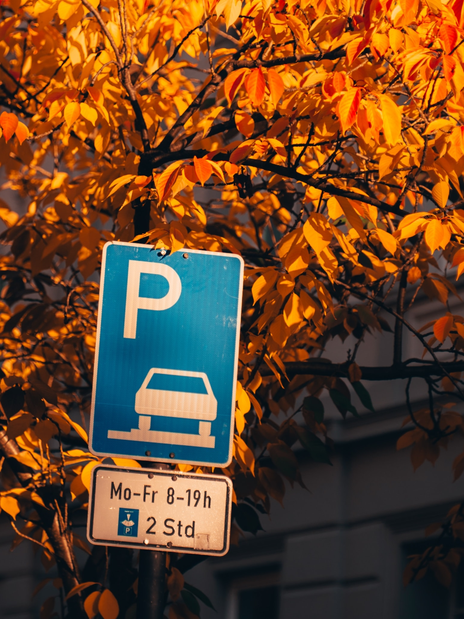 Parkplatzsituation Burgruine Riegelstein