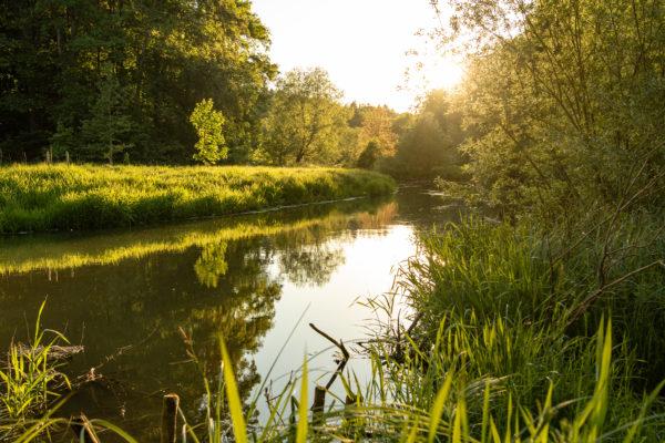 Das Bild zeigt einen Flußlauf in der Abendsonne.