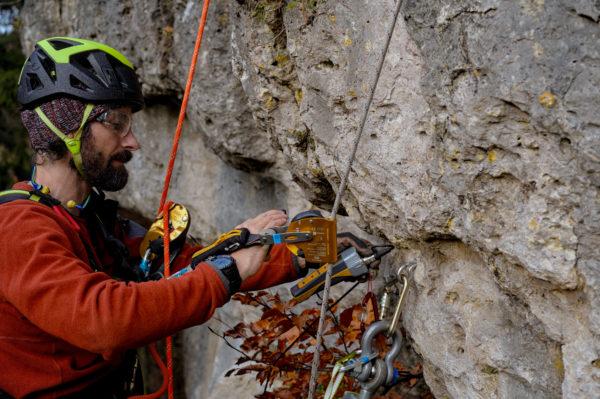 Das Bild zeigt Florian Helberg von der DAV Sicherheitsforschung bei einem Auszugsversuch eines Hakens an der Ammerthaler Wand