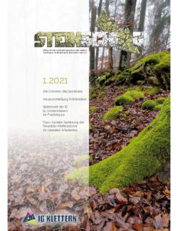 STEINSCHLAG-2021-1
