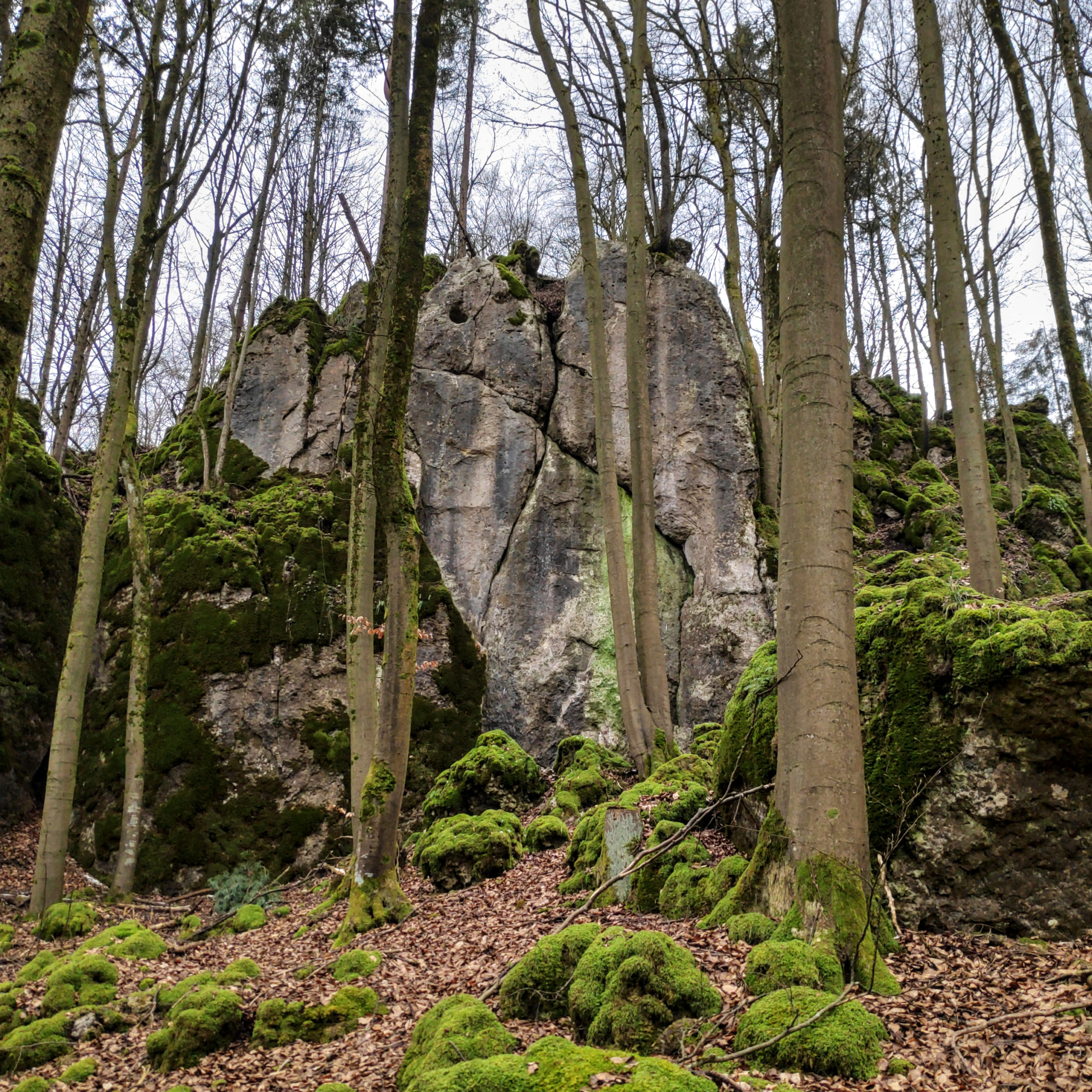 Das Foto zeigt die Heidelberg Nordwand im Trubachtal