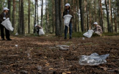 World Cleanup Day am Samstag
